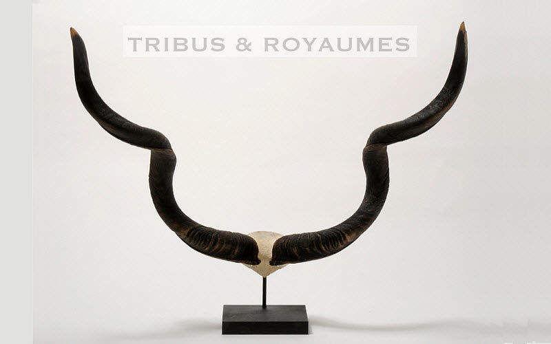 TRIBUS & ROYAUMES Trophée de chasse Taxidermie et Trophées de chasse Ornements Entrée | Ailleurs