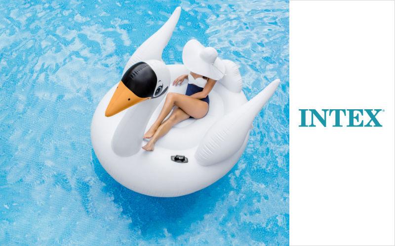 Intex Jeux aquatiques Jeux et confort Piscine et Spa  |
