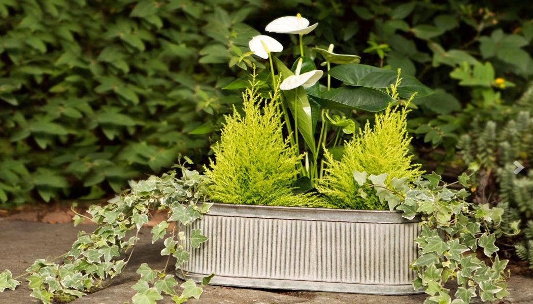 LONDON ORNAMENTS Jardinière Jardinières Jardin Bacs Pots  |