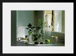PHOTOBAY - bouquet de lierre en décembre - Photographie