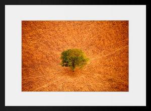 PHOTOBAY - zakouma sky view n°7 - Photographie