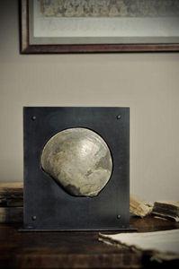 Objet de Curiosite - bivalve fossile dans support plasma - Fossile