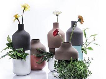 LITHHO -  - Pot De Fleur