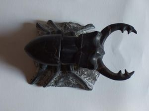 christophe chalard -  - Sculpture Animali�re
