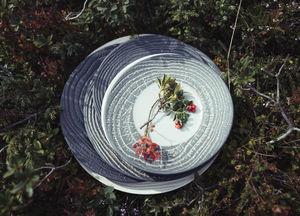 REVOL - effet bois poivre - Assiette Plate