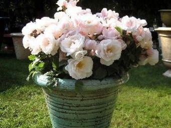PLANTERS-CONTACT-PROVENCE - pot droit-40-turquoise - Pot De Fleur