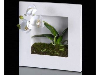 Deco Factory - tableau vegetal orchid�e artificielle cristie - Composition Florale