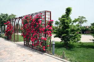 Jardines y sol Paisajismo -  - Arche