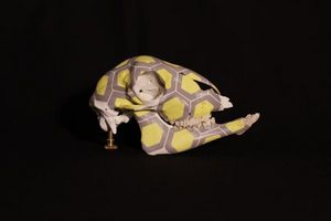 CRANATOMIE -  - Crâne Décoratif
