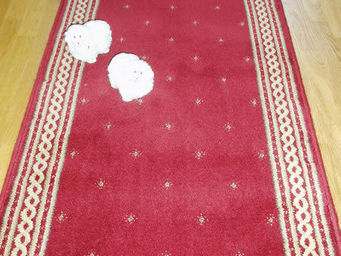 Moquettes A3C CARPETS - passage cordeli�re - Passage