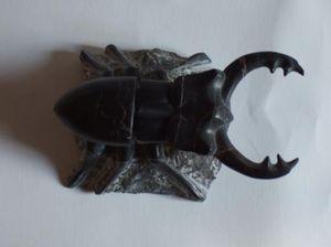 christophe chalard -  - Sculpture Animalière