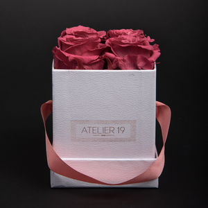 DECO SENS - box clasic 4 roses bois de rose - Fleur Stabilisée