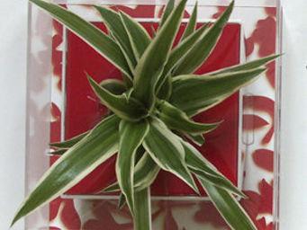 LES JARDINS DE CHLOE - zelie - Tableau Végétal