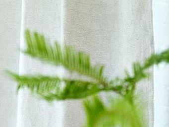 Designers Guild - tissus riveau - Tissu D'ameublement