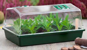 NATURE - petite serre semis et bouturage - Mini Serre