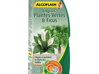 ALGOFLASH - engrais liquide plantes vertes et ficus 500ml - Engrais