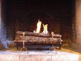 Cheminée de Changy - pomme de pin 80cm laiton - Brûleur