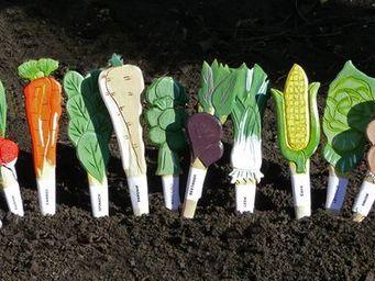 Wildlife world - veggie sticks pack of 72 - Etiquette De Jardin