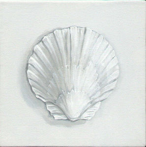 Gordon Collett Murals - scallop. - Nature Morte