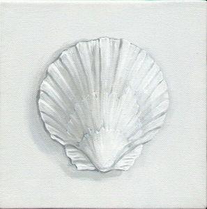 Gordon Collett Murals - scallop. - Nature Morte