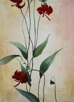 Tone Von Krogh Ceramics - lily greenwood - Nature Morte