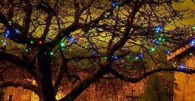 FEERIE SOLAIRE - Guirlande lumineuse-FEERIE SOLAIRE-Guirlande solaire Multicolore 100 Leds 11,8m