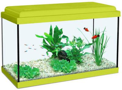 ZOLUX - Aquarium-ZOLUX-Aquarium enfant vert kiwi 12.5L