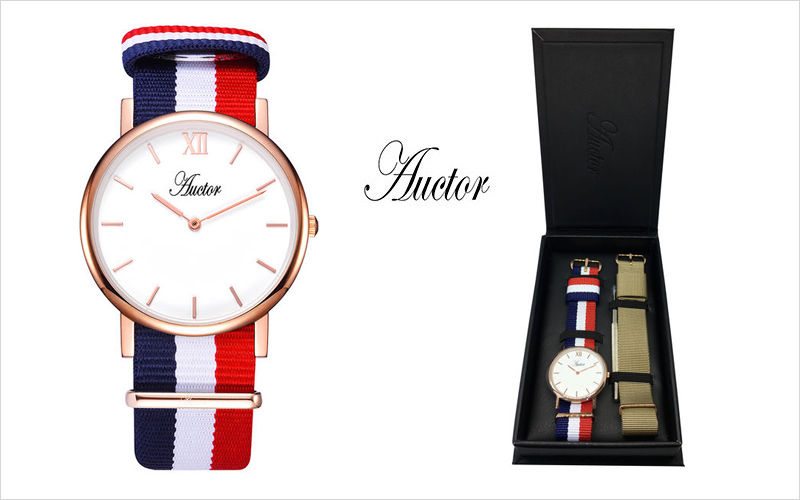 AUCTOR Watch Various decoration accessories Beyond decoration  |