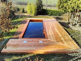 BIO POOL TECH -  - Natural Pool
