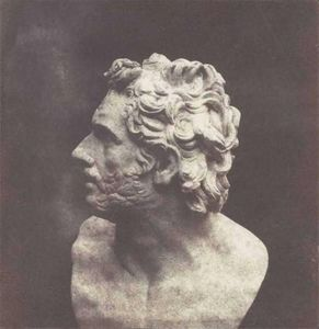 LINEATURE - the bust of patruclus - 1843 - Photography