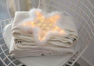 Blachere Illumination -  - Christmas Star