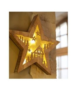 Blachere Illumination -  - Christmas Star