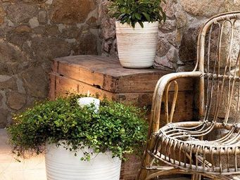 DEROMA France - farmer- - Flower Container