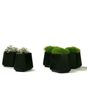 QUI EST PAUL ? -  - Garden Pot