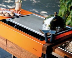INDU+ -  - Gas Fired Barbecue