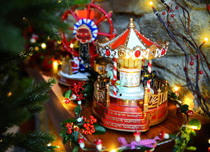 Blachere Illumination -  - Musical Carousel