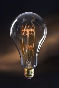 JURASSIC LIGHT - jerry - Light Bulb Filament