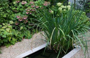 XAVIER DE CHIRAC -  - Landscaped Garden