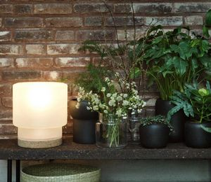 ILSE CRAWFORD -  - Table Lamp