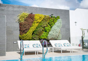 VERTISS -  - Grass Covered Wall
