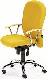 Posturemax -  - Office Armchair