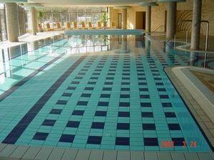 REX CERAMICHE ARTISTICHE -  - Indoor Pool