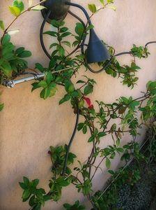 JPW -  - Garden Lamp
