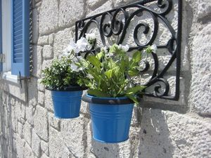 Odeco -  - Wall Mounted Planter