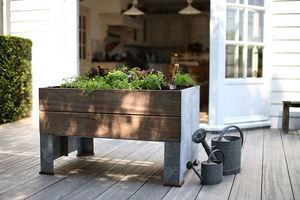 TRADEWINDS - cult - Garden Box
