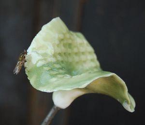 MANOLI GONZALEZ - fleur - Pflanzenskulptur