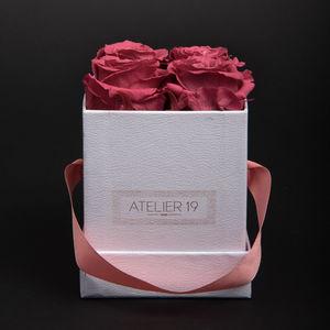 Atelier 19 - box clasic 4 roses bois de rose - Stabilisierte Blume