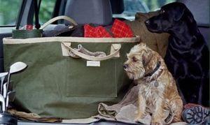 CARRIER COMPANY -  - Einkaufstasche