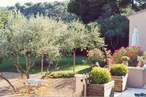 Jardins Du Sud -   - Landschaftsgarten