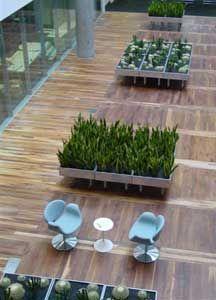 Indoor Garden Design - bbc - Natürliche Zimmerpflanze
